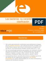 2 Bacterias