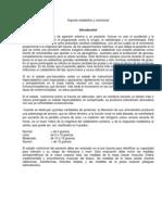 2. Soporte Metabólico y Nutricional. Guía de Práctica Clínica-ESE HUEM (1)