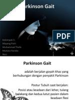 Parkinson Gait