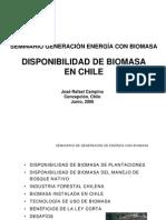 SeminarioBiomasaFINPRO_LIGNUM.pdf