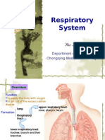 8th-Respiratory System (2)