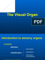 The Visual Organ