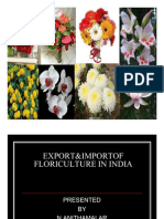 Export&Import floriculture in india