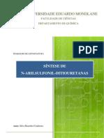 SILVA B. CONDOEIRA - TRABALHO DE LICENCIATURA - SÍNTESE DE N.pdf