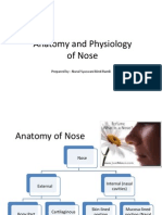 Anatomy and Physiology of Nose