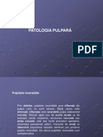 clasificare pulpite