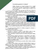Raport de Practica la Contabilitate - Caracteristica Generala a Societatii pe Actiuni Bucuria.doc