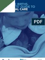 Majalah Multiple Births Neonatal Guide Web