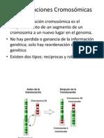 Translocaciones Cromosomicas