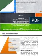 Organizacion y Comercializacion de Los Servicios de Consultoria