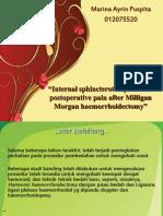 Internal Sphincterotomy Reduces Postoperative Pain After Milligan Morgan 2