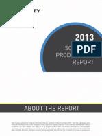 Agile Rapor 2013