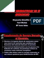 Fuentes Energeticas en El Ejercicio (2)(2)