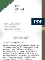Cibernetica Organizacional Finaltotal 1150. Pptx