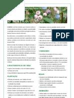 Ficha Mirtilo