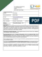 Aporte Individual JohanaCastro 90004 699
