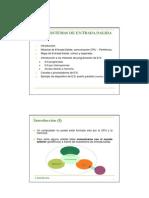 Entrada y salida de datos.pdf