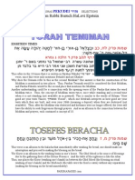 Pekudai - selections from Rabbi Baruch Epstein