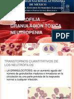 Neutrofilia (Expo)