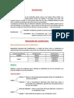 RESUMO - Repartição dos Rendimentos e Poupança e Investimento.docx