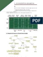 Apuntes Rugby PDF