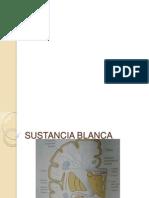 SUSTANCIA_BLANCA (1).pptx