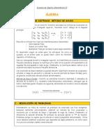 Resumen de Algebra MATII