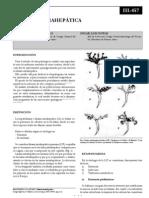 Litiasis intrahepatica (SACD).pdf