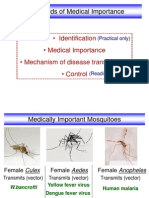Medically Important Mosquitoes & Flies 2012