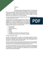 Principios informativos laboral