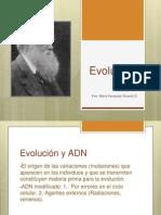 Evolución.ppt