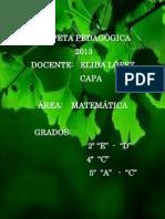 CARPETA PEDAGÓGICA 2013
