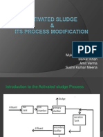 activated sludge