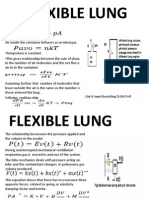 Lung Modelling3
