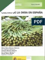 Cultivo Okra Espanha