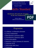 Il Modello Standard,  Introduzione alle Particelle Elementari ed alle Forze Fondamentali