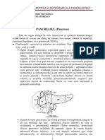 Anatomie Pancreas