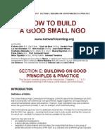 NGOs E Principles[1]