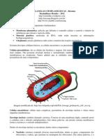 Resumo Organelas e Estruturas Celulares - Max - 2012