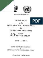 Declaracion de Los Derechos Humanos