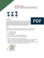 Trabajo Matematicas - Conica