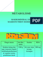 metabolisme makronutrien