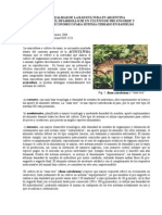 071201_La Realidad de La Ranicultura en Argentina 2004