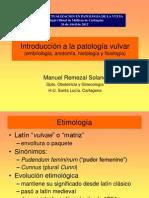120426 Anatomia Vulva R