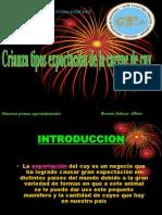 Diapositivas Cuy