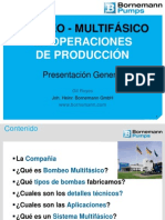 Bornemann Multiphase Presentation