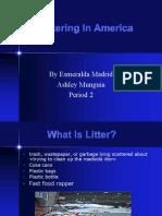 Littering in America