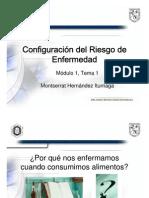 Tema 1.Configuración del riesgo
