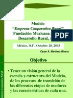 Modelo ECR Diagnóstico
