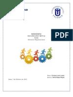 Monografia Organizacion Virtual